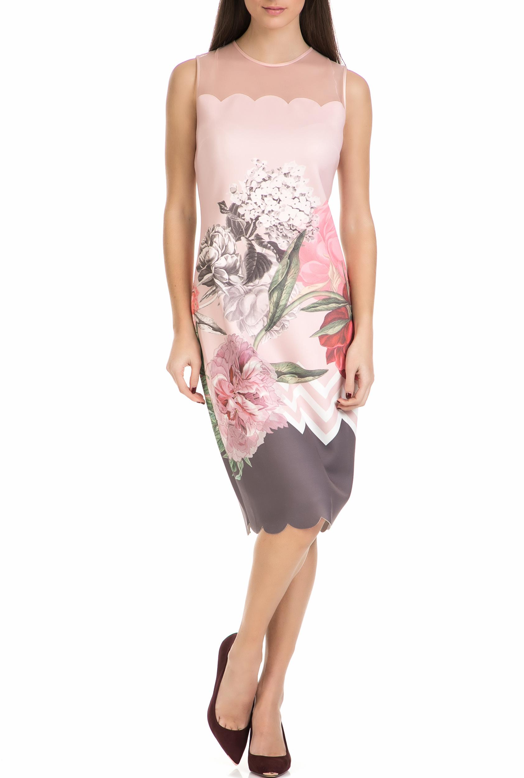 TED BAKER - Γυναικείο μίντι φόρεμα ARIONAH PALACE GARDENS SCALLOP ροζ με φλοράλ  γυναικεία ρούχα φορέματα μέχρι το γόνατο